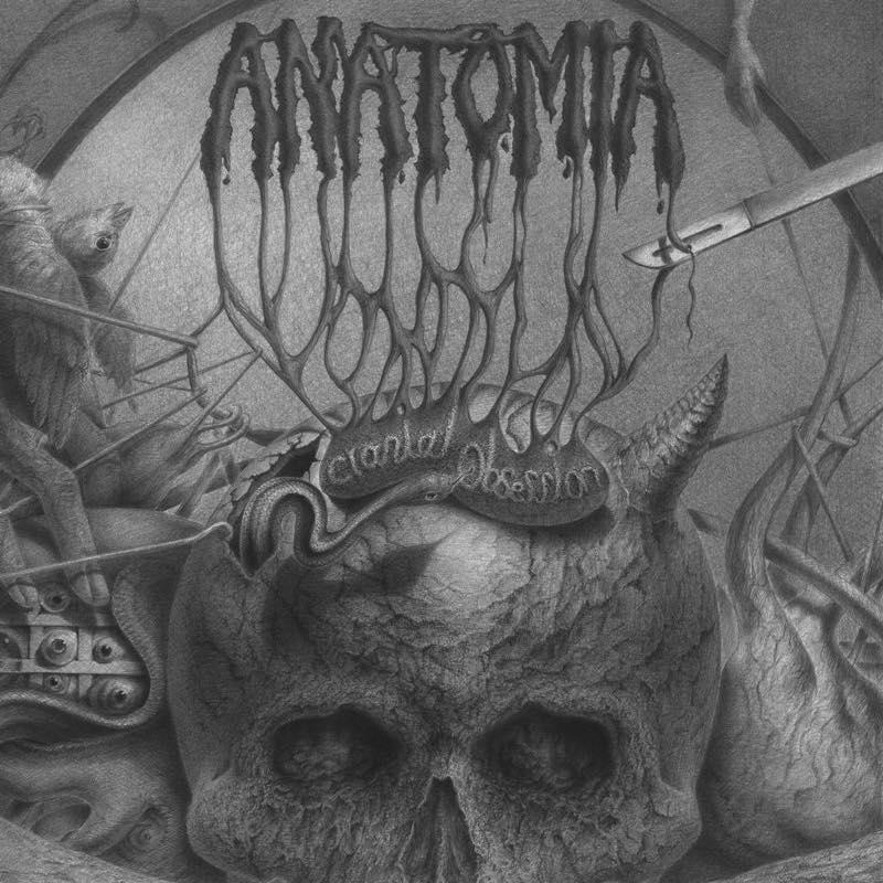Cranial Obsession / ANATOMIA
